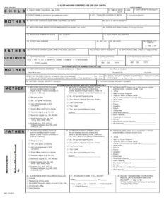 Reptile Birth Certificate Template – Shouldirefinancemyhome for Fake Birth Certificate Template