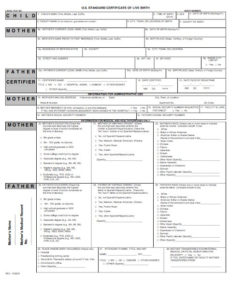 Reptile Birth Certificate Template – Shouldirefinancemyhome intended for Birth Certificate Fake Template