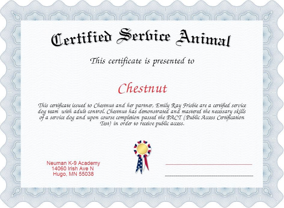 Service Dog Certificate Template (4) | Professional in New Service Dog Certificate Template