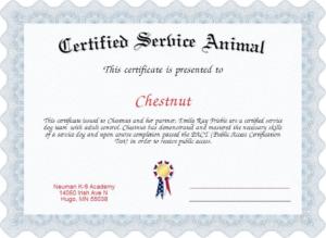 Service Dog Certificate Template (4) | Professional regarding Fresh Service Dog Certificate Template