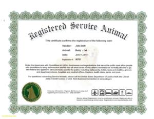 Service Dog Certificate Template | Certificate Templates inside Fresh Service Dog Certificate Template