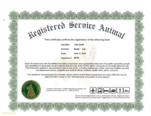 Service Dog Certificate Template | Certificate Templates within Service Dog Certificate Template