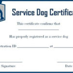 Service Dog Certificate Template Free In 2020 | Service Dogs pertaining to Dog Training Certificate Template Free 10 Best