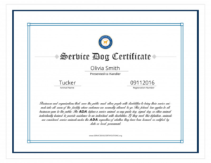 Service Dog Certificate Template Unique Free Dog Birth with Unique Dog Training Certificate Template Free 10 Best