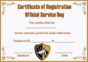 Service Dog Papers Template | Service Dogs, Certificate within Service Dog Certificate Template