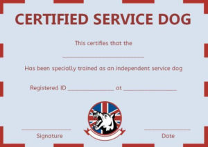 Service Dog Training Certificate Templates | Certificate inside Dog Training Certificate Template Free 10 Best