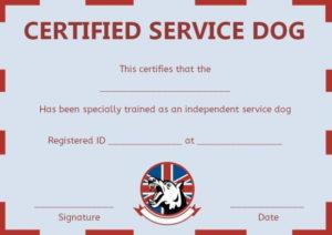 Service Dog Training Certificate Templates | Certificate pertaining to Service Dog Certificate Template