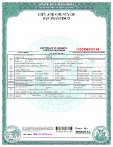 South African Birth Certificate Template Unique 019 Official in New Birth Certificate Template Uk