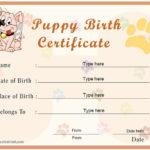 Special Certificates – Puppy Birth Certificate Within Unique Puppy Birth Certificate Template