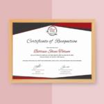 Star Performer Certificate Templates (2) – Templates Example Intended For Star Performer Certificate Templates