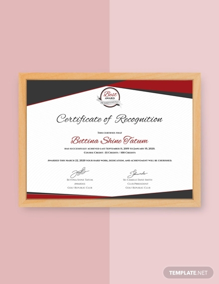 Star Performer Certificate Templates (2) - Templates Example intended for Star Performer Certificate Templates