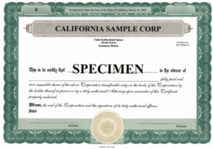 Stock Certificate Template Microsoft Word Editable Free in Best Free Stock Certificate Template Download