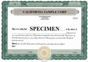 Stock Certificate Template Microsoft Word Editable Free in Stock Certificate Template Word