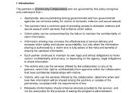 12 Printable Memorandum Of Agreement Sample Business with regard to Unique Partner Business Plan Template