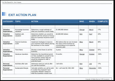 17+ Business Action Plan Examples In Pdf | Ms Word | Pages for One Page Business Plan Template Word