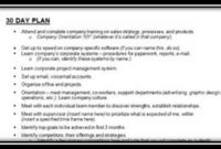 30 60 90 Day Plan Sales Manager Example – Uirunisaza.web Within Unique Business Plan For Sales Manager Template