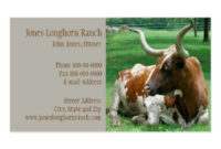 6,000+ Texas Business Cards And Texas Business Card pertaining to Fresh Livestock Business Plan Template