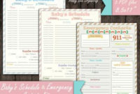 Baby Log 0-6 Months Nanny Log Baby'S Day Schedule in Baby Shower Agenda Template