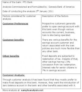 Bank Customer Analysis, Sample Bank Customer Analysis with Customer Service Business Plan Template