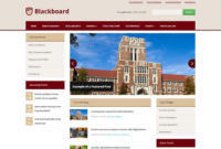 Blackboard – WordPress Theme For Schools & Colleges inside Fresh WordPress Business Directory Template