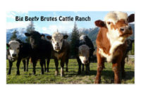 Cattle Business Cards & Templates | Zazzle within Livestock Business Plan Template
