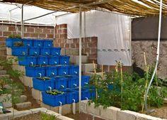 Fish Farming Business Plan In Nigeria Pdf - Sample throughout Aquaponics Business Plan Templates