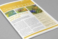 Free Indesign Newsletter Template: Design No. 2 | Free within Business Plan Template Indesign