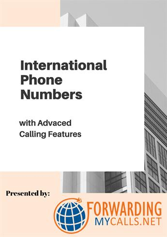 International Phone Numbers With Advanced Calling Features inside Fresh WordPress Business Directory Template
