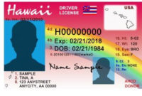 Massachusetts Driver License Psd Template within Quality Fake Business License Template
