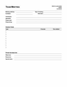 Meeting Minutes Templates Within 1 On 1 Meeting Agenda Template