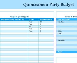 Quinceanera Party Budget – My Excel Templates Throughout New Party Planning Business Plan Template
