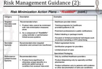 Risk Management Plan Example – Emmamcintyrephotography regarding Business Development Template Action Plan